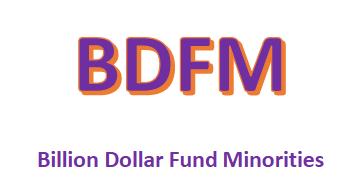 Billion Dollar Fund Minorities